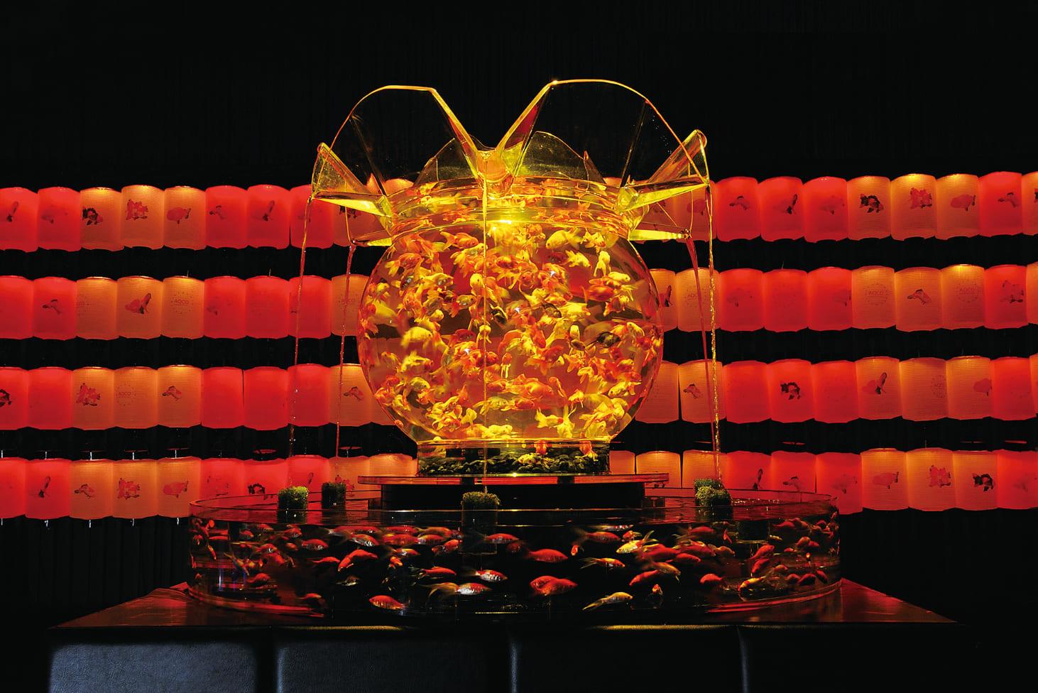 熱い夏に涼める芸術『アートアクアリウム美術館』が凄い‼