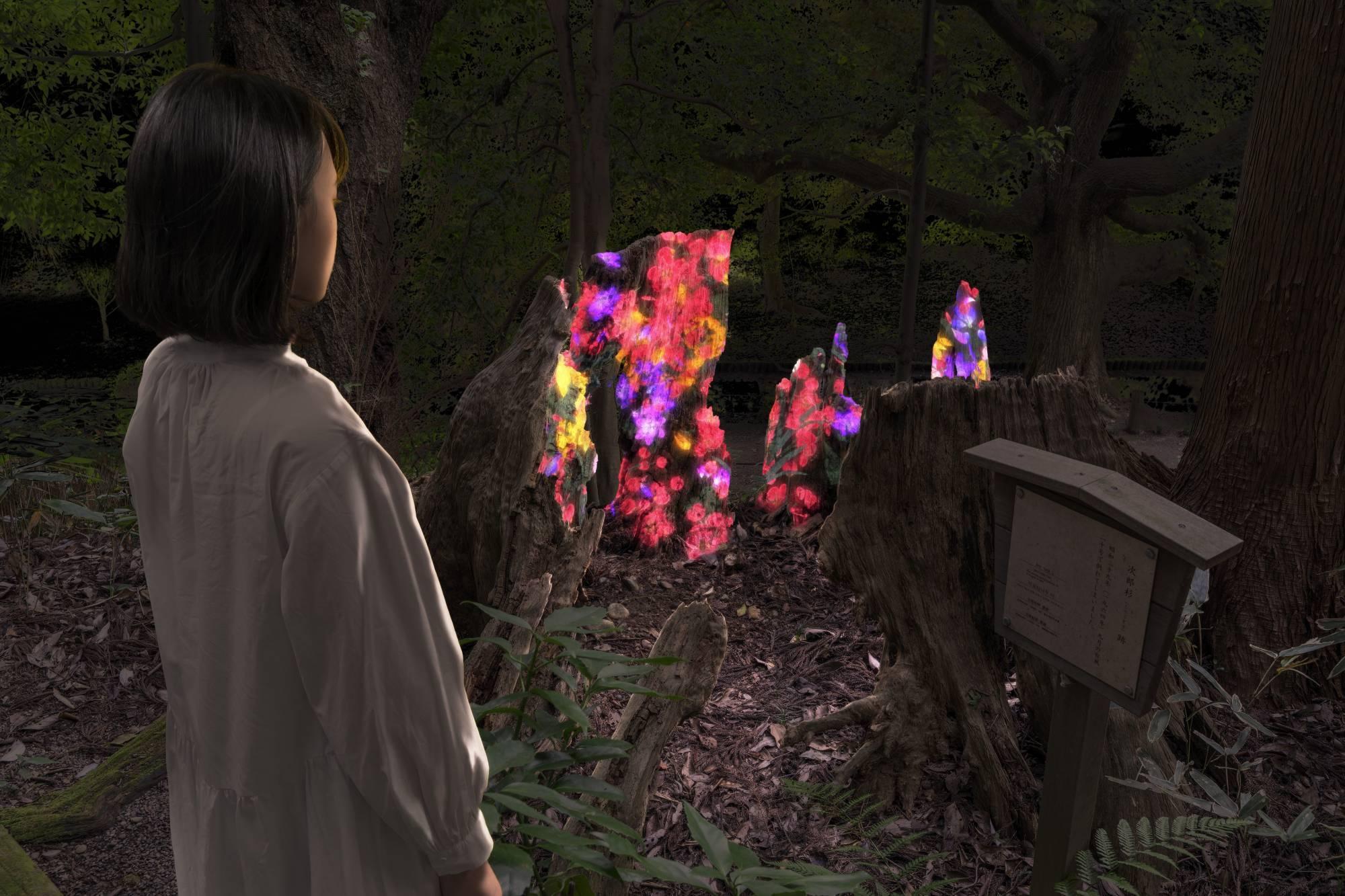 チームラボ偕楽園 光の祭