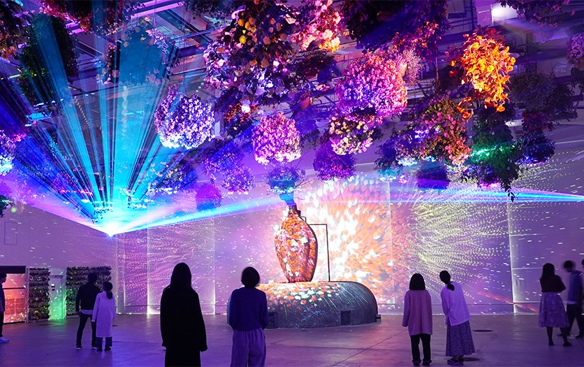 エンタメ×植物園を実現した施設!『ハナビヨリ(HANA・BIYORI)』であなたの植物の概念が変わる!?